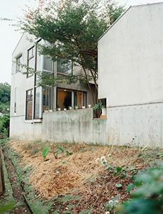 西側に開放された高低差のある敷地と建物をみる