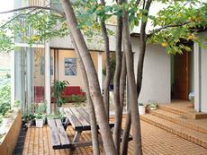 中庭を通った右側に玄関がある正面の部屋はリビング
